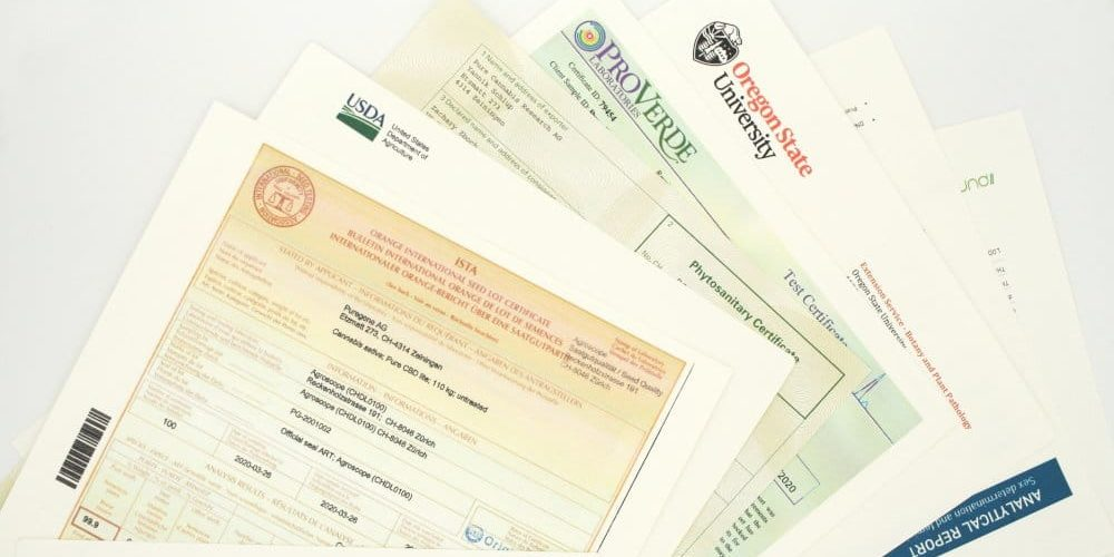 Paperwork and permits