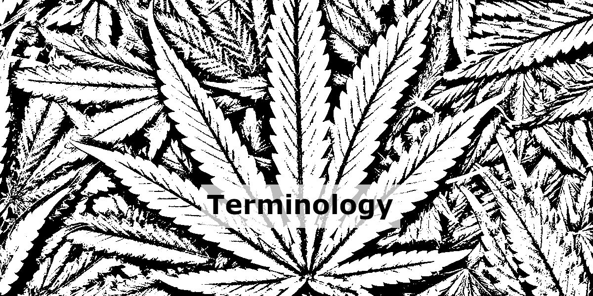 """Black And White Hemp Leaf With The Word """"Terminology"""" In The Middle."""